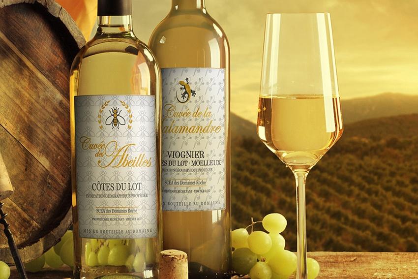 graphiste étiquettes vin blanc la rochelle bordeau cahors saumur